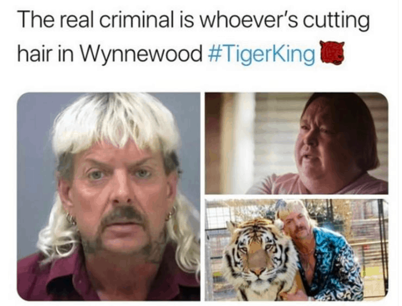 cutting hair tiger king meme